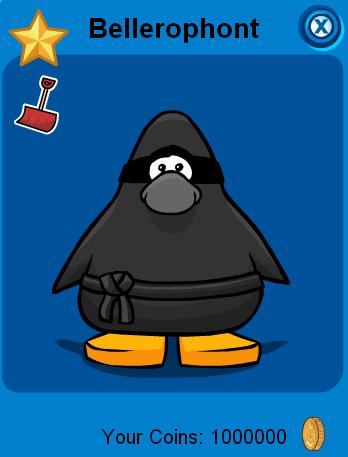 belle-ninja